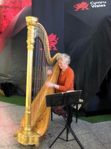 Ann Jones Walsh entertaining us with Welsh harp music